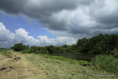 Natuurgebied De Ruige Weide langs het spoor, dicht bij Hogebrug