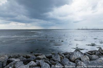Waddenzee bij Schiermonnikoog