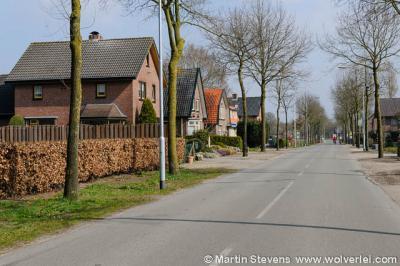 Speuld, gemeente Ermelo, Veluwe, Gelderland