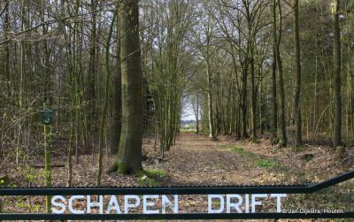 Het mooie wandelgebied Schapendrift in Nieuw Sterkenburg