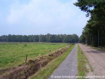 Strijbeek, Strijbeekse Heide vanaf de Heistraat