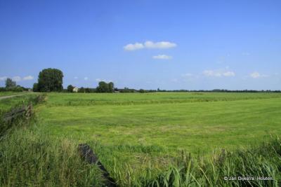Polder Groot Wilnis-Vinkeveen bij Vinkeveen