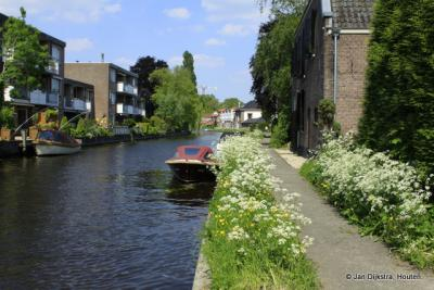 Langs het Jaagpad De Nes bij de Oude Rijn in Woerden.