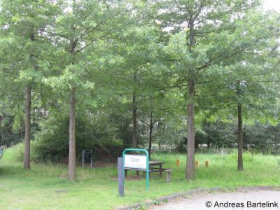 Zeldam, de in 1997 geplante moeraseiken als symbool van het succesvolle samenwerkingsverband van de vijf toenmalige gemeenten die nu de gem. Hof van Twente vormen.