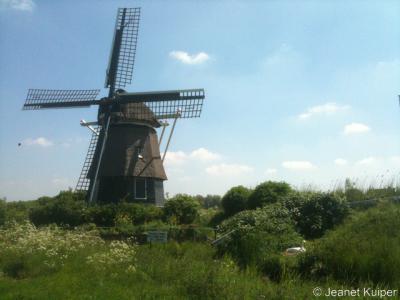 Molen De Hommel, ook wel De Kleine Molen, in de buurtschap Zuid-Schalkwijk, gemeente Haarlem
