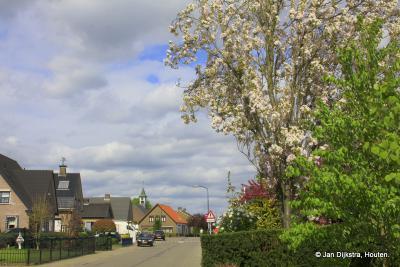 Achterberg in het vroege voorjaar