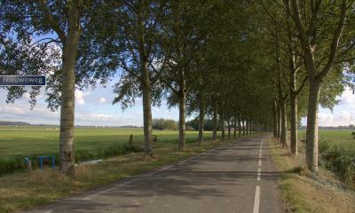 De Nieuweweg is een handige verbindingsweg tussen de Achterdijk en de Lingedijk voor als je in deze omgeving een wandel- of fietsrondje wilt maken. Zie verder de tekst bij Landschap etc. (© Jan Dijkstra, Houten)