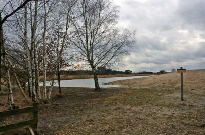 Het grensoverschrijdende natuurgebied De Plateaux - Hageven ligt ZW van Achterste Brug. De foto heeft betrekking op de Belgische kant van het gebied. (© van deze foto en die hierboven: Henri Floor / www.henri-floor.nl)