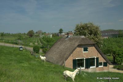 Achthoven is een mooie buurtschap om door te fietsen of wandelen, met veel groen en monumentale boerderijen