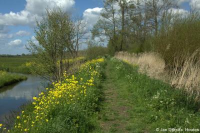 De idyllische Lakerveldse Molenkade in het voorjaar. Aanbevolen om eens te gaan bewandelen. Deze kade vormt de grens tussen de Polder Achthoven in het W en de Polder Lakerveld in het O.