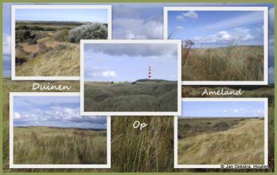 De duinen op Ameland in de gemeente Ameland