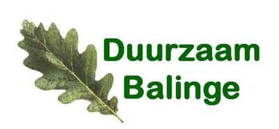 Werkgroep Duurzaam Balinge heeft als doel het dorp en omgeving duurzamer te maken. Dit doet ze d.m.v. kennisoverdracht, duurzame investeringen en de Houtgroep, die onderhoud pleegt aan houtsingels in en om de Broekstreek.
