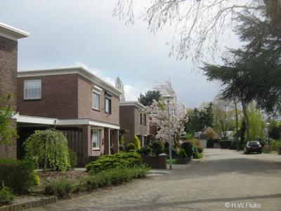 """De huizen in Batadorp hebben platte daken omdat zolders volgens dhr. Bata toch alleen maar rommel zouden aantrekken. Tja, wees eens eerlijk: wie heeft er níét een zolder vol 'rommel' thuis, die men """"zonde vindt om weg te gooien""""... :-)"""