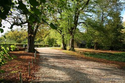 Je kunt heerlijk wandelen op landgoed Mariënwaerdt