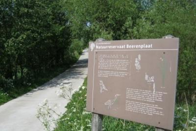 Natuurreservaat Berenplaat bestaat uit 'doorgeschoten' grienden, rietvelden en kreken. Deels vrij toegankelijk, grotendeels afgesloten vanwege de kwetsbare natuur. (© www.spijkenieuws.nl)