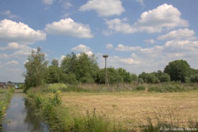 In buurtschap Bilwijk is de afgelopen jaren 270 hectare landbouwgebied heringericht tot natuurgebied. In de graslanden zijn vele soorten weidevogels te zien, waaronder de grutto, kievit en tureluur. En ook ooievaars voelen zich hier thuis!