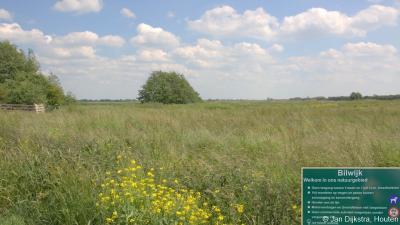 Uitzicht op het in de afgelopen jaren gerealiseerde natuurgebied Bilwijk