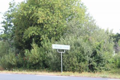 Blauwe Hand is ook een bosrijke buurtschap, zoals je híér kunt zien. (© Gerda en Leen Louwerse)