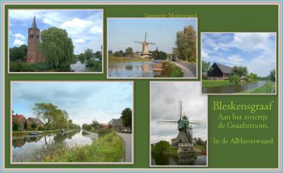 Bleskensgraaf is een dorp in de provincie Zuid-Holland, in de streek Alblasserwaard, gem. Molenlanden. T/m 1985 gem. Bleskensgraaf en Hofwegen. In 1986 over naar gem. Graafstroom, in 2013 over naar gem. Molenwaard, in 2019 over naar gem. Molenlanden.
