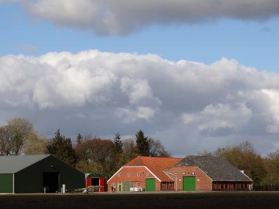 Dit is op zich al een bijzonder fraai boerderijcomplex in Borgercompagnie, ook met die houtwallen erbij, en als je dan ook nog zo'n mooie zonnige wolkenlucht erbij treft, is het helemaal een plaatje om in te lijsten. (© https://groninganus.wordpress.com)