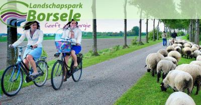 Landschapspark Borsele is met haar talrijke boomgaarden de grootste fruitproducent van Nederland. In het voorjaar zorgt de bloesem voor lieflijke taferelen. In de zomer en het najaar is het fruit te koop bij stalletjes en boerderijwinkels.