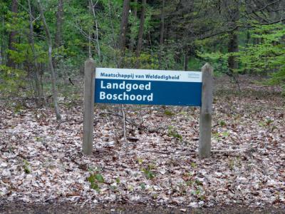 Boschoord is een buurtschap en ook een landgoed, nog altijd in beheer bij de Maatschappij van Weldadigheid. (© H.W. Fluks)