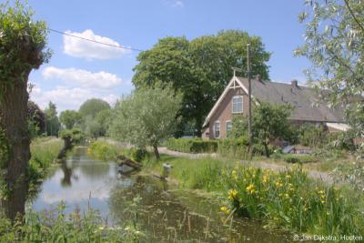 Vroeger werden de slootkanten strak geschoren. Tegenwoordig mogen de slootkanten gelukkig weer volop bloeien, ten gunste van plant en dier en het uitzicht van de mensen, zoals hier in buurtschap Bovenkerk.