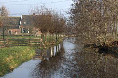 Ook rond de Wildveldseweg in Polder Breudijk zie je een landschap zoals bij veel andere buurtschappen in deze omgeving: veel weiland, veel water en veel wilgen. (© Jan Dijkstra, Houten)