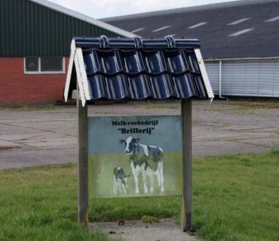 Bij sommige boerderijen heeft men een mooi bord vervaardigd met de naam van de boerderij, en soms ook nog een 'schilderij' erbij dat laat zien wat ze doen, zoals hier bij melkveehouderij Brillerij. Dit is tevens een mooi 'alternatief plaatsnaambord'.