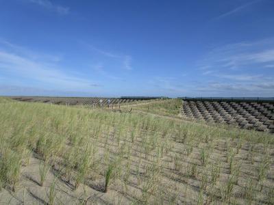 De nieuwe duinen bij Camperduin, met uitzicht op de bestaande Hondsbossche Zeewering, die dus versterking nodig had om de kust hier voorlopig weer veilig genoeg te laten zijn. (© Lida Buijsman-Konijn)
