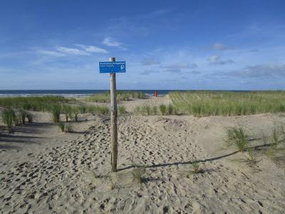In 2015 is er een flink stuk duinen bij gekomen tussen Camperduin en Petten, in het kader van het versterken van de zeewering. Er is maar liefst 35 miljoen kuub zand opgespoten, zodat de duinen hier weer voor decennia veilig zijn. (© Lida Buijsman-Konijn)