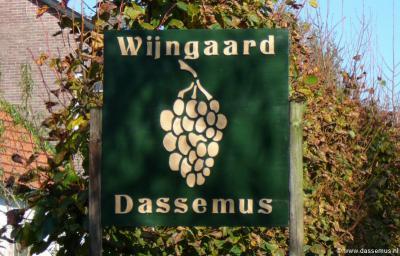 Wijngaard Dassemus in de gelijknamige buurtschap bij Chaam is in 2005 van start gegaan en wil geleidelijk groeien naar een productie van 15.000 liter = ca. 20.000 flessen wijn per jaar.
