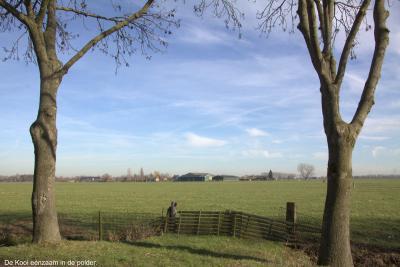 Buurtschap De Kooi ligt erg geïsoleerd midden in de polder, ver weg van andere bebouwing. (© Jan Dijkstra, Houten)