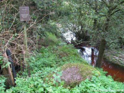 Lonneker, sommige rijksmonumenten weten zich goed te verstoppen, zoals de Bergwonnersteen aan de Noordergrensweg