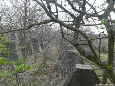Onderdeel van de antitankwal bij buurtschap De Pan zijn ook de zogeheten 'drakentanden'. Ook daarvan zijn er nog heel veel bewaard gebleven.