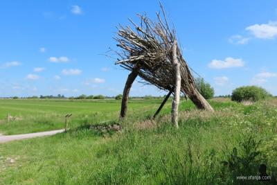 """Dit boomkunstwerk is bedacht en gemaakt door inwoners van De Tike. """"Wy binne tige wiis mei en grutsk op ús beammen"""", oftewel """"Wij zijn erg blij met entrots op onze bomen"""", aldus een paneel bij het kunstwerk. Voor nadere informatie zie het hoofdstuk Beeld"""