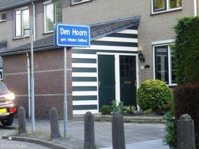 Den Hoorn is een dorp in de gemeente Midden-Delfland. T/m 2003 viel het onder de gemeente Schipluiden. Voor 1921 viel het nog onder andere gemeenten, zie daarvoor het kopje Status.