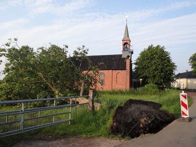 De korte maar hevige storm van 5 juni 2019 trok een spoor van omgevallen bomen van Enumatil via Den Horn en Lagemeeden naar Vinkhuizen. Hier een exemplaar bij het kerkje van Den Horn. (© https://groninganus.wordpress.com/2019/06/05/avondrondje-enumatil)