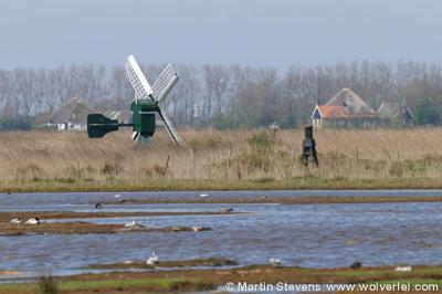 Een van de molentjes in de buurtschap Dijkmanshuizen, gefotografeerd vanuit de vogelkijkhut