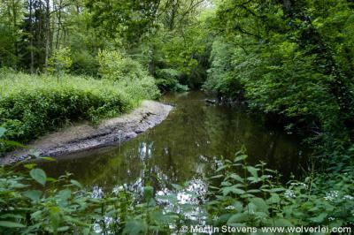 De Dinkel is een van de bekendste rivieren van Twente. Bij Glane komt de rivier vanuit Duitsland Nederland binnen, en in het N gaat zij bij Lattrop Duitsland weer in. In Twente is de rivier 46 km lang.