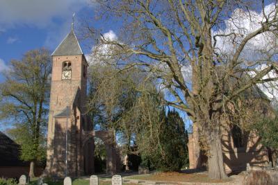 Als Hervormde (PKN) kerk van Dreumel dient het laatgotische, omstreeks 1500 gebouwde koor der oude dorpskerk. Ook de oude kerktoren is bewaard gebleven. Het schip is nog slechts een ruïne. (© Jan Dijkstra, Houten)