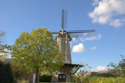 De Korenmolen van Dreumel is een ronde stenen stellingmolen uit 1845. Na onttakeling in vermoedelijk de jaren dertig van de 20e eeuw, is hij in 2009 uitwendig weer in piekfijne staat gebracht. De molen is niet maalvaardig. (© Jan Dijkstra, Houten)