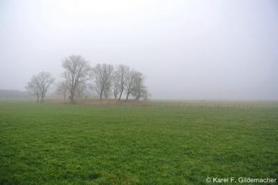 De dorpsterp van Engwier, sinds 1903 praktisch gezien en sinds 1949 formeel alleen nog een buurtschap met slechts 3 boerderijen. De kerk is nl. in 1903 afgebroken, maar de dorpsstatus is pas in 1949 formeel opgeheven.
