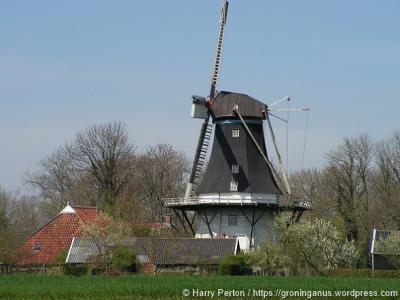 Molen Joeswert te Feerwerd, na de in 2012 gereedgekomen restauratie weer in vol ornaat (© Harry Perton/https://groninganus.wordpress.com)