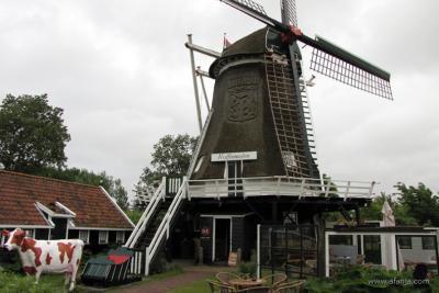 Dé blikvanger in het dorp Formerum is windmolen de Koffiemolen of Formerumermolen. In het rietdek van de molen is het wapen van Terschelling verwerkt. De begane grond is ingericht als koffiehuis. (© https://afanja.com/2020/09/28/even-bijtanken)