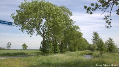 De Torenweg is een O zijweg van de Molenweg. Deze zal zo genoemd zijn omdat hij uitzicht biedt op de toren van de kerk van Giessen-Oudekerk.