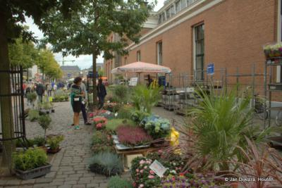 Op de bloemenmarkt op het Akerkhof in Groningen