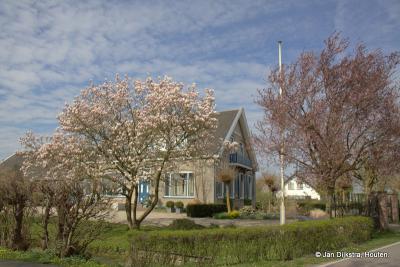 Huize Reijneveld in het vroege voorjaar, in buurtschap Haanwijk