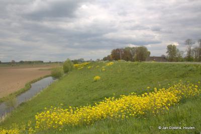 De Lekdijk tussen Hagestein en Vianen in het vroege voorjaar.