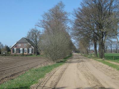 De meeste zandwegen in de buitengebieden van ons land zijn in de loop der jaren geasfalteerd of anderszins verhard. In het buitengebied van Halle zijn gelukkig nog zandwegen bewaard gebleven. (© H.W. Fluks)